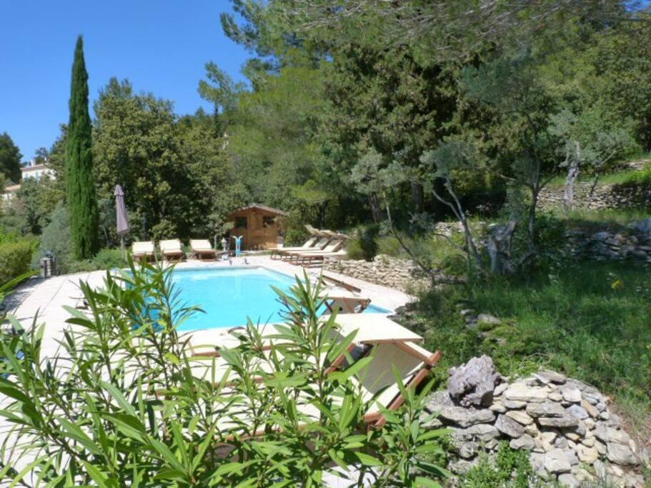 piscine privée à l'abris des regards, nichée au coeur de la végétation