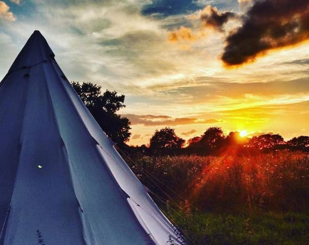Wild Harvest Tipis and Activities