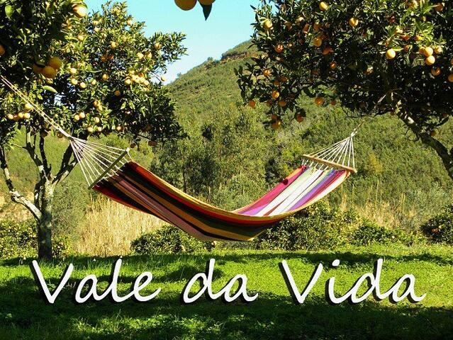 The pure life at vale da vida... - Silves kommun - Hus