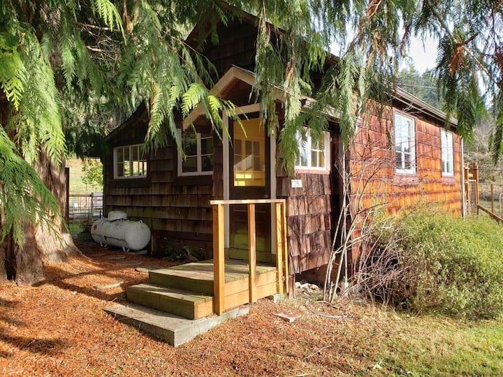 The Cabin at Cedar Farm: Spring-fed & Unplugged
