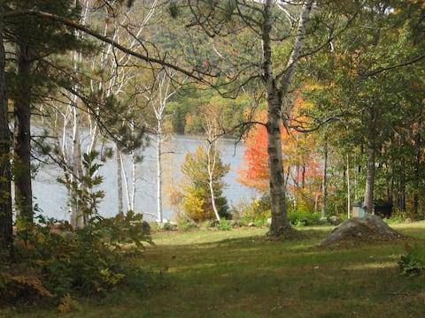 Rustic Cabin on Pristine Lake