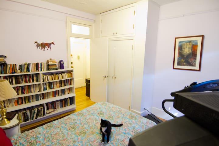 Cheerful, comfortable room