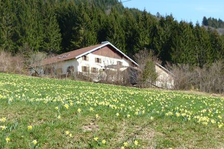 "Gîte ""HATTA"" 2 épis 3* belle vallée - Sapois"