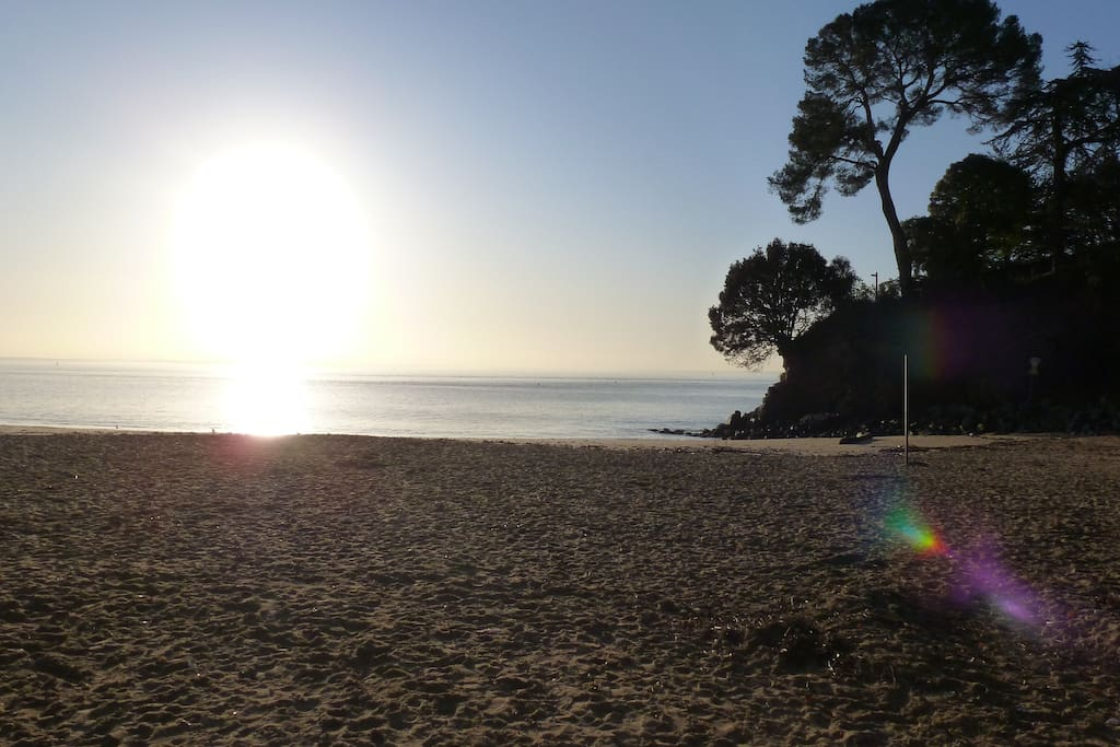 Une charmante petite plage (Porcé) à 150 m à pied de votre appartement. Un petit centre de surveillance est installé pendant l'été si vous avez des enfants.