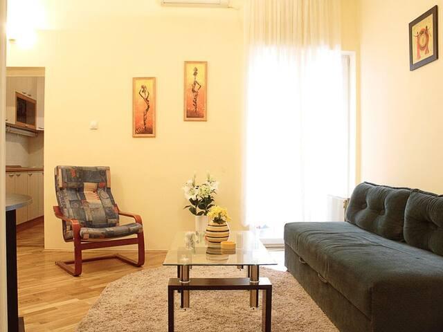 Enjoyable Ana Apartment - Belgrade - Belgrade - Apartment