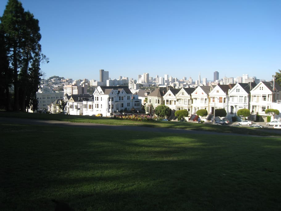 Painted Ladies on the next block