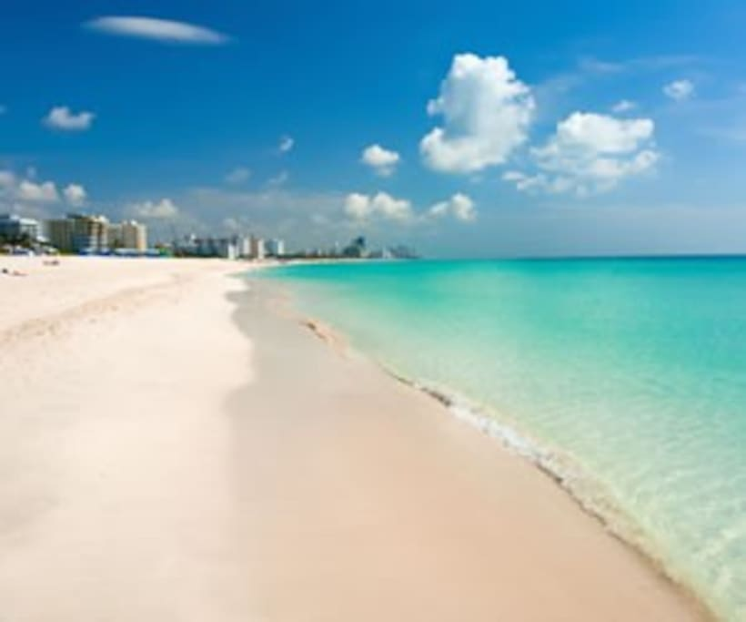 Beach Paradise Miami Reviews