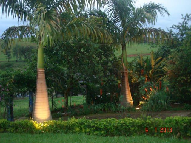 Fazenda Produção Profissional Leite - Baependi