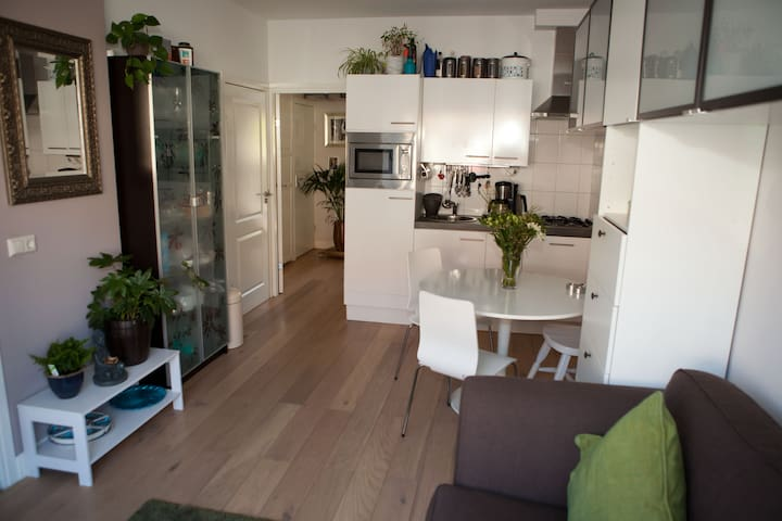Nice and cosy apartment with garden - Utrecht - Byt