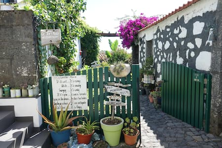 Guesthouse Joe's Place (Pico) VG Friendly