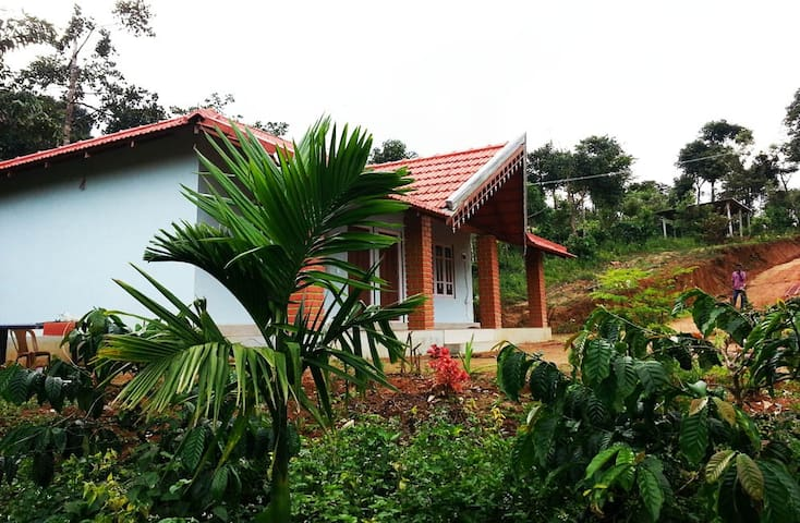 Best Homestay in Sakleshpur - Gowdahalli Forest