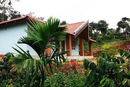 Forest Homestay Sakleshpur - Be in Nature