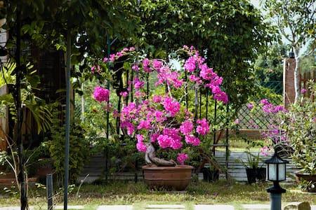Spring Garden Homestay - tp. Phú Quốc - Bungalow