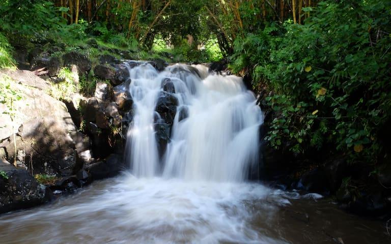 Hawaii's Best Waterfall Retreat in Honolulu