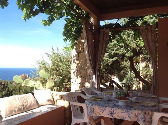 COSTA PARADISO  Villa MIRTO  residence-cactus