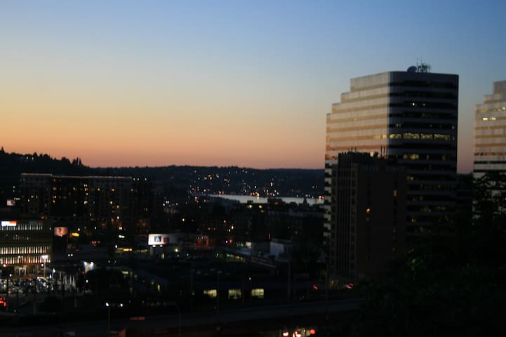 View of Downtown and Lake Union from the Master Bedroom