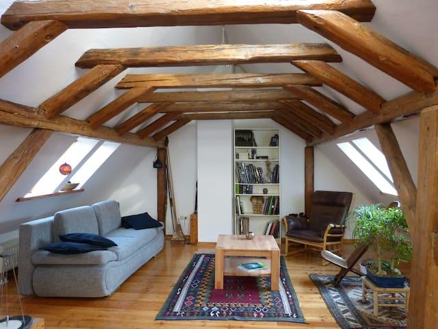 Romantisches Ferienhaus/Würzburg - Zell am Main - House