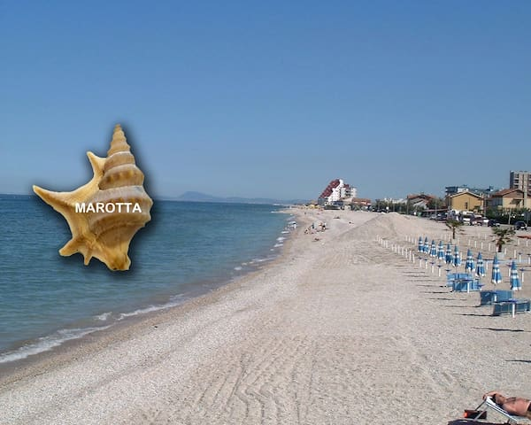 Spacious Loft: Adriatic Coast - beach 3mins walk - Marotta