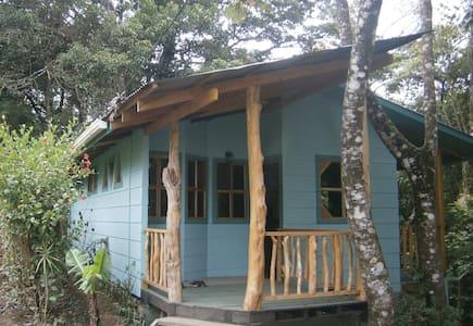 Monteverde Forest Hideaway - Monteverde
