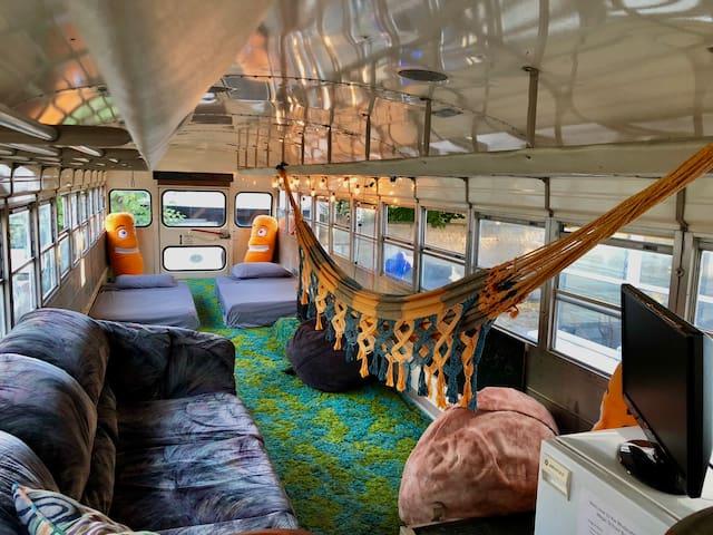 The Moderately Magic School Bus
