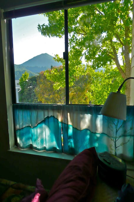 view of Mt. Tam out the bedroom window
