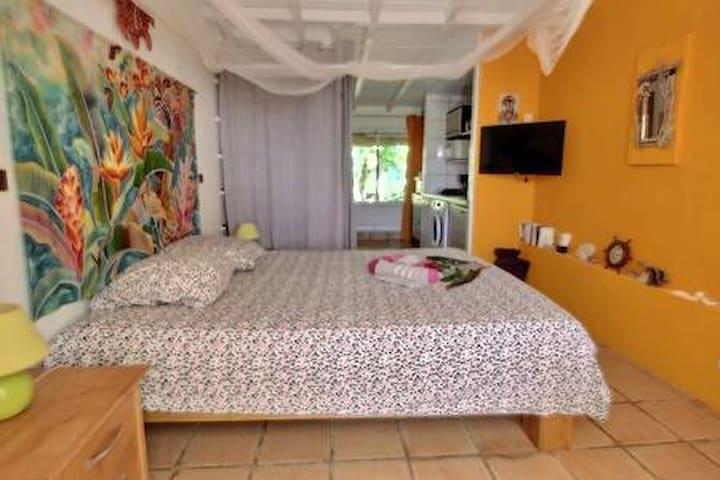 Chambre 2 (studio) autre angle de vue. Au fond la terrasse arrière