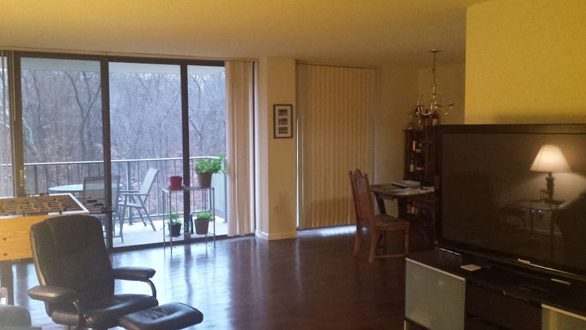 Close to UMD, NASA Goddard, and DC - College Park - Apartment