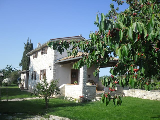 Istra village house Galant - Žminj - Appartement