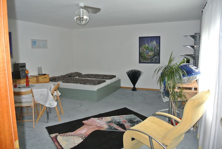 Great apartment near Baden-Baden - Iffezheim - Huoneisto