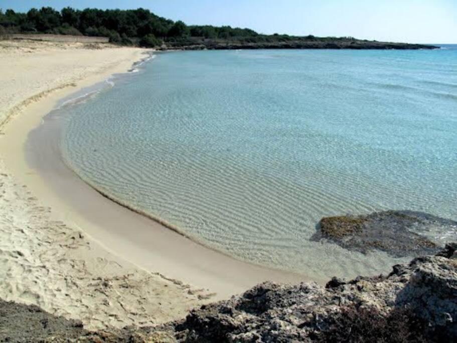 spiaggia di Montedarena, a meno di 10 minuti a piedi dalla villa