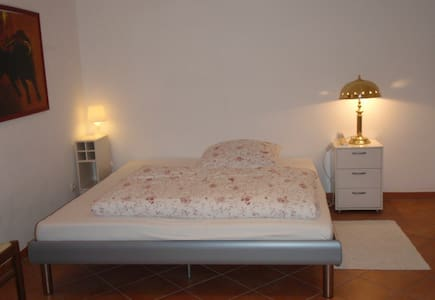 Cosy and quiet room with shower - Vaterstetten - House