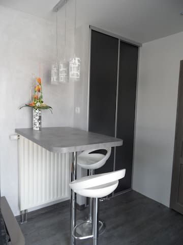 STUDION MEUBLE NEUF - Illkirch-Graffenstaden - Apartmen