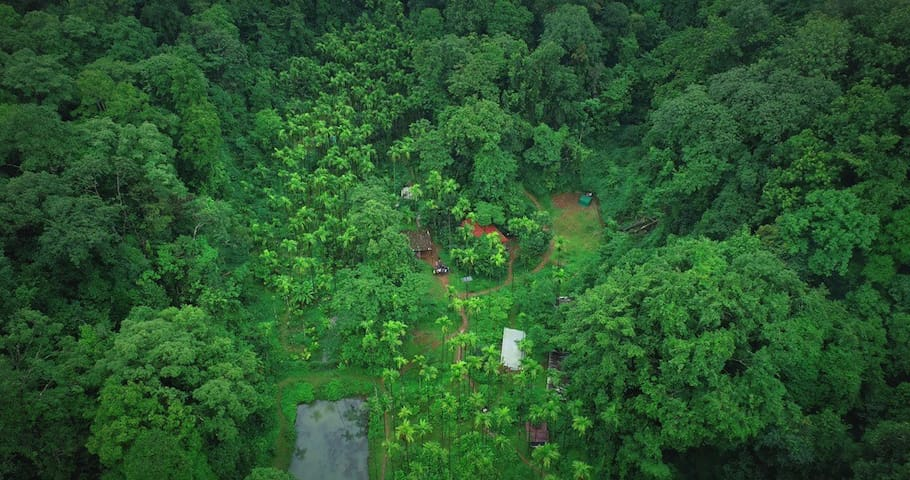Kalinga Mańe -Rainforest stay in the land of Kings
