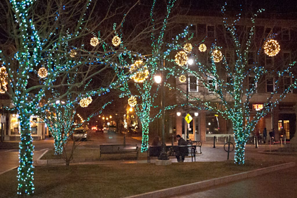 Longfellow Square decked out for winter. We are less than two blocks away
