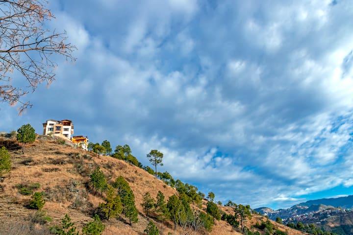 Hackett, Shimla by LivingStone