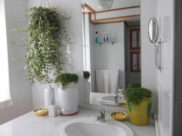 Baño planta baja (downstairs bathroom)