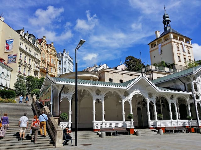 Spacious Double room in the spa center - Karlovy Vary - Bed & Breakfast