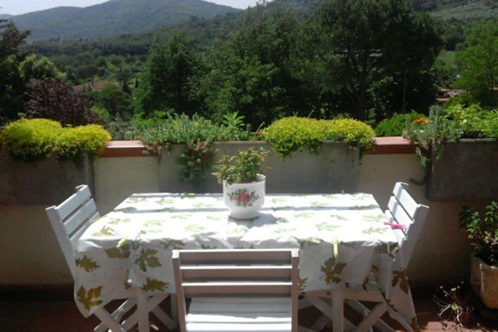 #terrace view