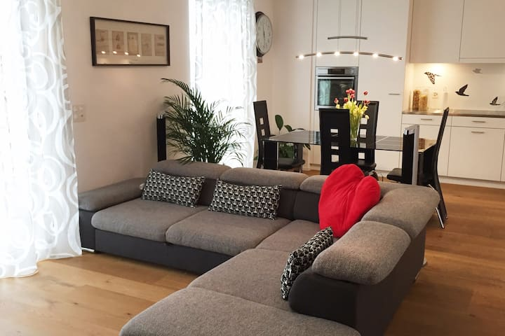 Rooms in a new apartment, next to Airport and City - Wallisellen - Leilighet