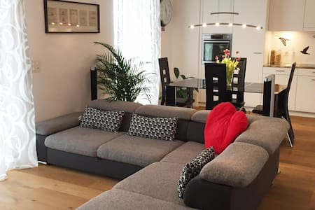 Rooms in a new apartment, next to Airport and City - Wallisellen - Apartament