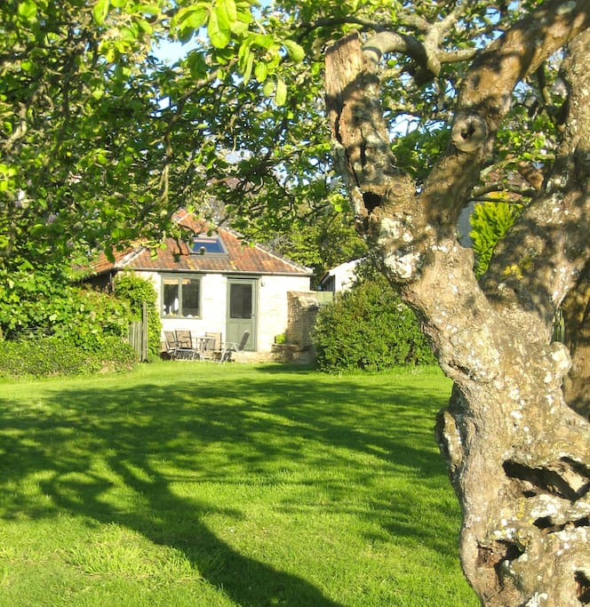 Orchard View Cottage through the Apple Trees