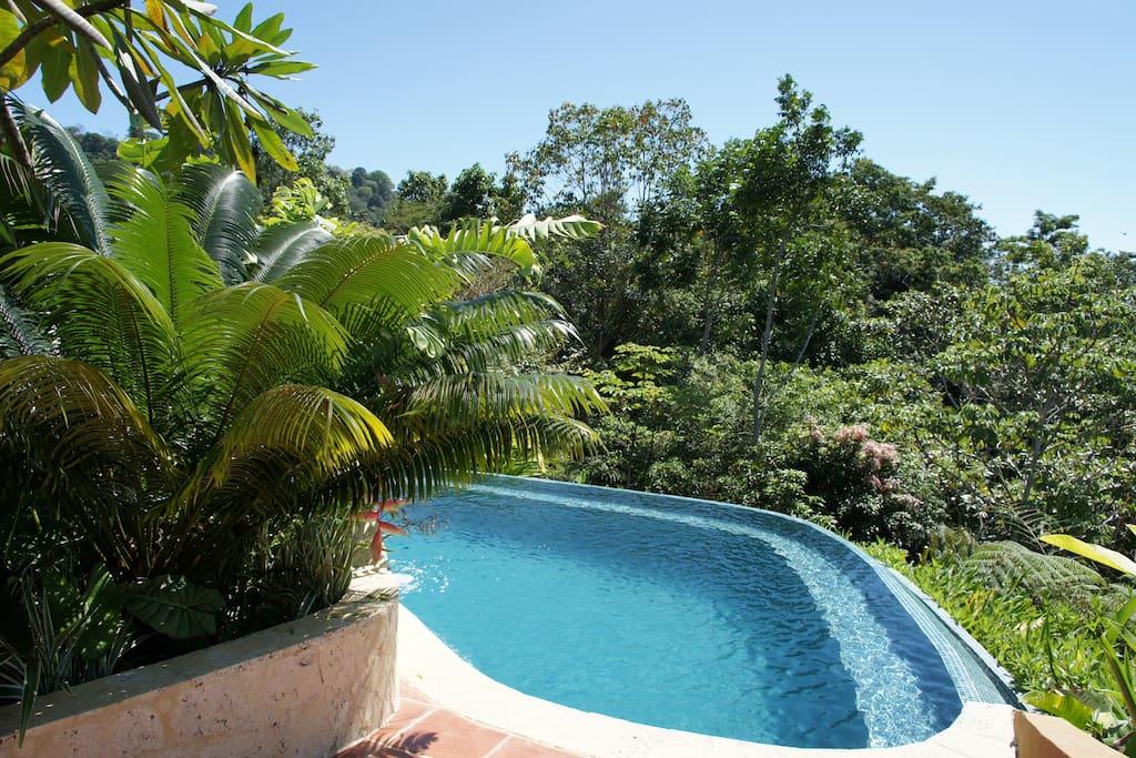 Rain forest villa near Dominical