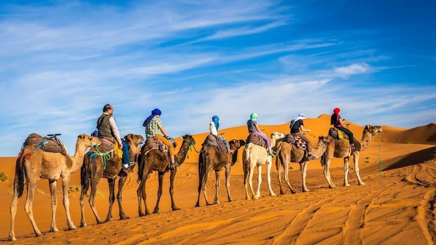 Hassan Berber camp
