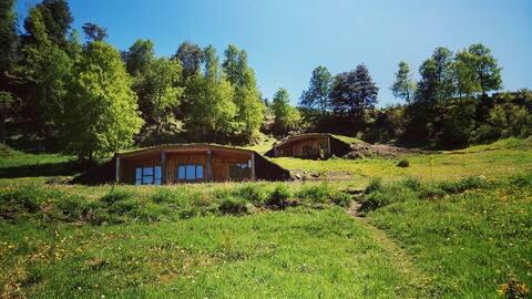 Cabaña Curarrehue