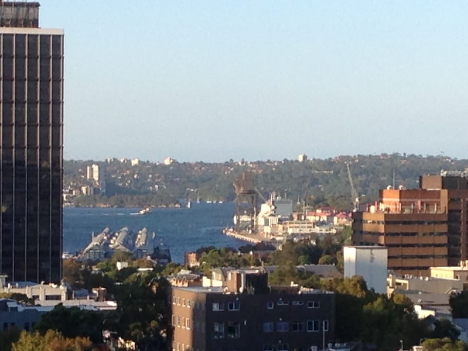 Wooloomooloo view from the apartment