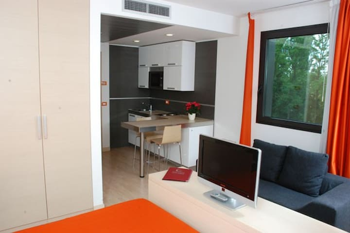 Studio apartment with  kitchenette Galileo