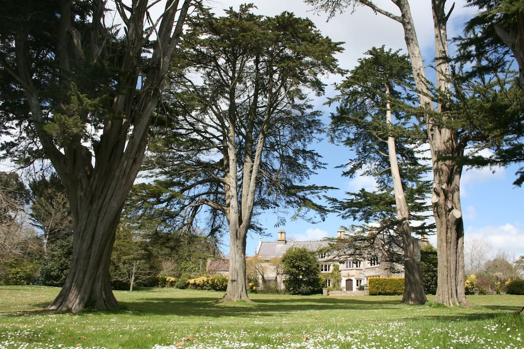 Extensive grounds and gardens - exclusive hire if all 5 cottages at Norburton Hall are booked (for 18-24 people).