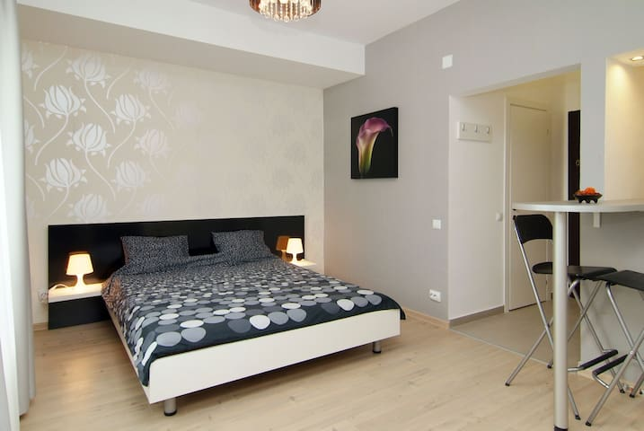 Central studio Romana square - Bucarest - Apartamento