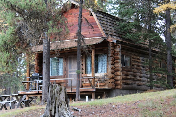 'Moose Paddle' cozy cabin nestled in the pines.