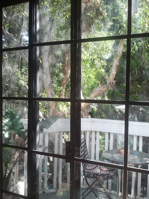 view of deck surrounded by trees. squirrels and hummingbirds are constant visitors!